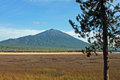 Mount bachelor from sparks lake towers over a the marshy flood plains of in the central oregon cascades Stock Photo