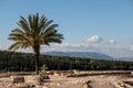 Mount Carmel from Megiddo