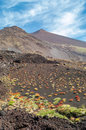 Mount etna volcanic nature in the mountains of Royalty Free Stock Photography