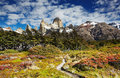 Mount fitz roy argentina los glaciares national park patagonia Royalty Free Stock Photo