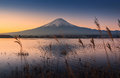 Mount Fuji at dawn Royalty Free Stock Photo