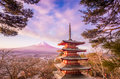 Mount fuji at kawakuchiko lake in japan Royalty Free Stock Photo