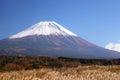 Mount fuji med japan försilvrar gräs Royaltyfri Foto