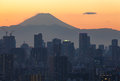 Mount Fuji and Tokyo city view Royalty Free Stock Photo