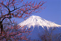 Mount Fuji XXIII Royalty Free Stock Photo