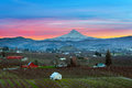 Mount Hood over Hood River at Sunset Royalty Free Stock Photo