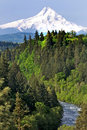 Mount Hood with River in Foreground Royalty Free Stock Image