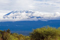 Mount kilimanjaro highest mountain in africa kibo summit of uhuru peak worlds highest free standing mountain Stock Photos