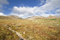 Mount Massive Trail Royalty Free Stock Photo