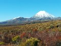 Mount Ngauruhoe and Mount Tongariro Royalty Free Stock Photo