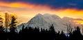 Mount Rainier sunrise Royalty Free Stock Photo