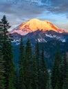 Mount Rainier at sunrise in Mount Rainier National Park, Washing Royalty Free Stock Photo