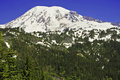 Mount rainier washington usa Royaltyfria Bilder