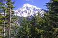 Mount rainier washington usa Royaltyfria Foton