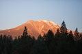 Mount Ranier Royalty Free Stock Photo