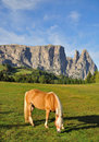 Mount Sciliar,Dolomites,South Tyrol Royalty Free Stock Image
