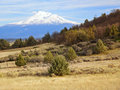 Mount shasta california scenic view of as seen from rural country side Stock Photography
