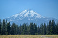 Mount Shasta Royalty Free Stock Photo