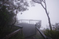 Mount warning very cool walk up mt nsw lookout to nothing in clouds Stock Photo