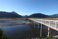 Mount white bridge waimakariri river new zealand looking north across the over the in the arthurs pass in the southern alps region Stock Image