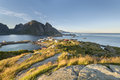 Mountain aerial view on Lofoten Islands, Norway Royalty Free Stock Photo