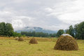 Mountain Altai. Skew hay collected in haystack Royalty Free Stock Photo