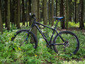 Mountain bike by CUBE in the forest