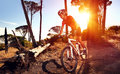 Mountain bike cyclist riding single track sunrise healthy lifestyle active athlete doing sport Royalty Free Stock Photo