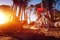 Mountain bike cyclist riding single track sunrise healthy lifestyle active athlete doing sport Royalty Free Stock Photos