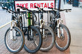 Mountain bike rentals row of four bikes in bicycle rack in front of sign Royalty Free Stock Photos