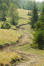 Mountain bike trail off road for cycling and hiking Stock Photo