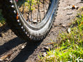 Mountain bike wheel detail Royalty Free Stock Photo