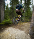 Mountain biker in the air fast moving riding on a trail wilderness of canada Royalty Free Stock Image