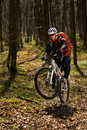 Mountain biker riding on bike in springforest landscape. Royalty Free Stock Photo