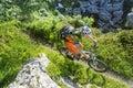 Mountain biker top view Royalty Free Stock Photo