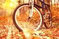 Mountain biking in autumn forest Royalty Free Stock Photo