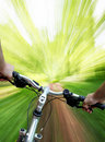 Mountain biking in the forest Royalty Free Stock Photo