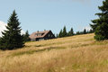 Mountain chalet in the middle of forest meadow Royalty Free Stock Photography