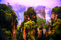 Mountain columns in zhangziajie hallelujah avatar mountains hunan province china famous for the and inspring the movie Stock Images