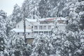 Mountain cottage covered with snow in dalhousie himachal pradesh Royalty Free Stock Images