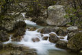 Mountain creek with little waterfalls Royalty Free Stock Photo
