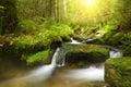 Mountain creek in the National park Sumava