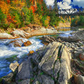 Mountain fast flowing river stream of water in the rocks at autu Royalty Free Stock Photo
