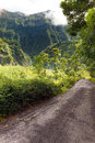 Mountain in a fog and clouds and road. Tropical nature. Tahiti. Polynesia. Royalty Free Stock Photo