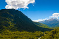 Mountain and forest landscape in new zealand this is a picture of a view on the way to milford sounds Stock Photos