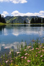 Mountain lake in austria beautiful Stock Photography