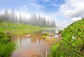 Mountain lake with fog, rock, flowers and trees. Stock Photography