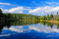 Mountain lake during summer day, devastated forest Bavarian Forest National Park. Beautiful landscape with blue sky and clouds, Ge Royalty Free Stock Photo