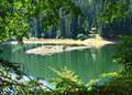 Mountain lake ukraine sinevir in transcarpathia Royalty Free Stock Photos