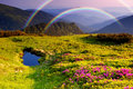 Mountain landscape with Flowers and a rainbow Royalty Free Stock Photo
